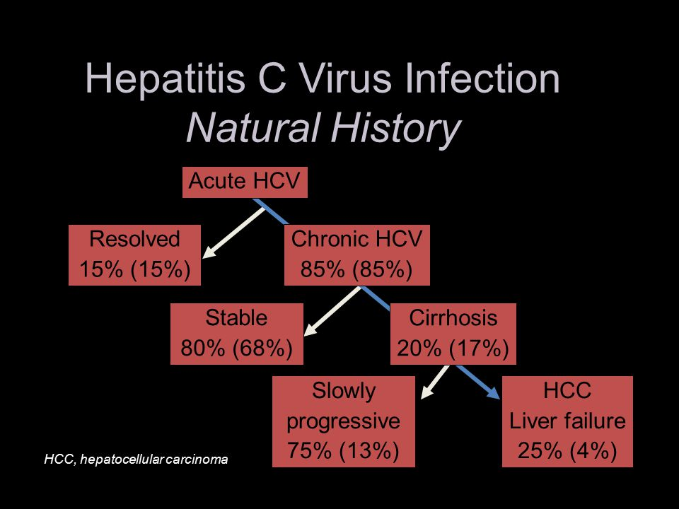 Hepatitis C Virus Infection Natural History