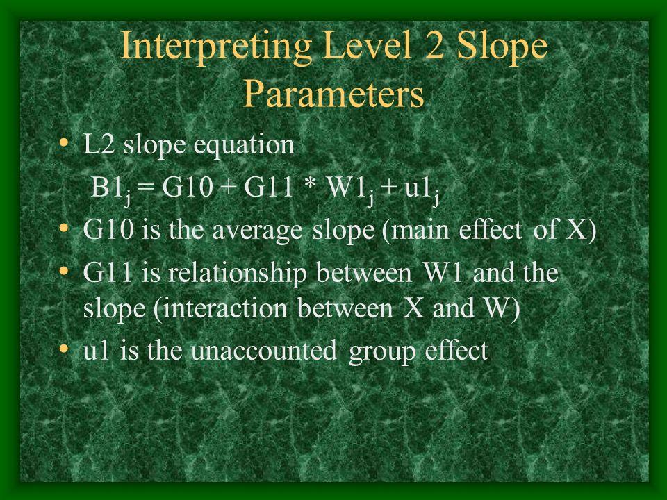Interpreting Level 2 Slope Parameters