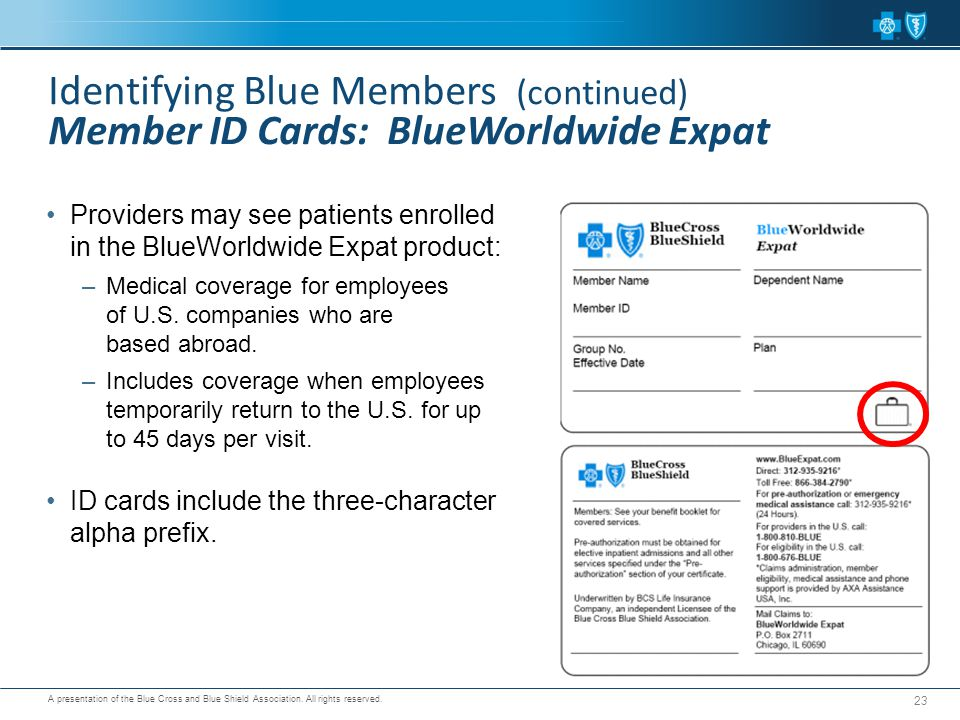 Identifying Blue Members (continued) Member ID Cards: BlueWorldwide Expat