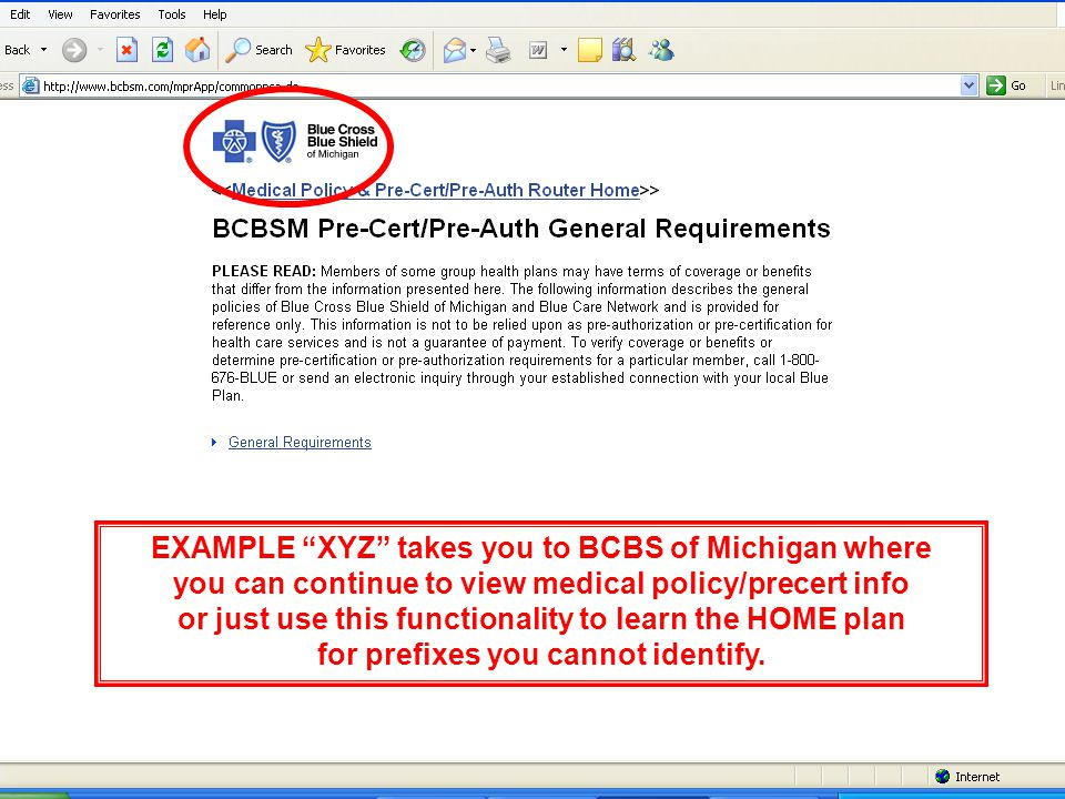 EXAMPLE XYZ takes you to BCBS of Michigan where