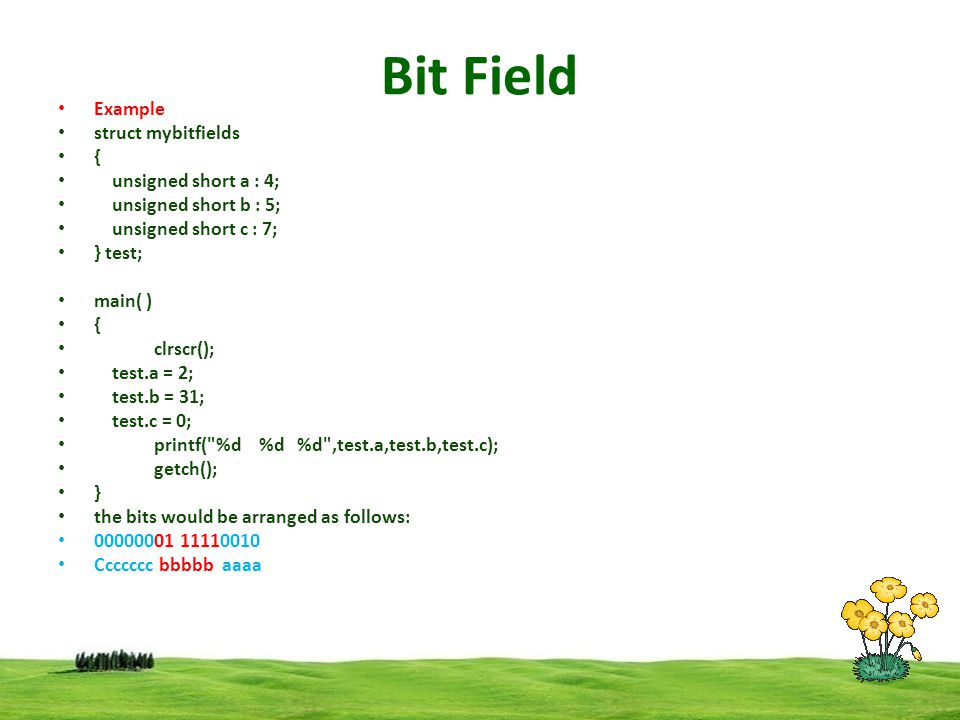 Bit Field Example struct mybitfields { unsigned short a : 4;