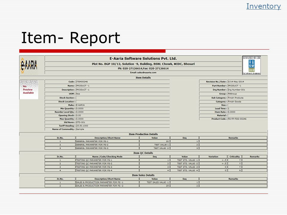 Inventory Item- Report