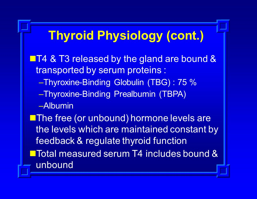 Thyroid Physiology (cont.)
