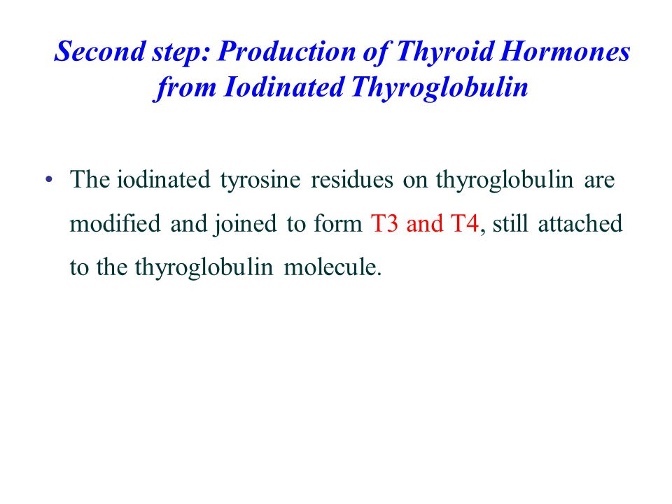 Second step: Production of Thyroid Hormones