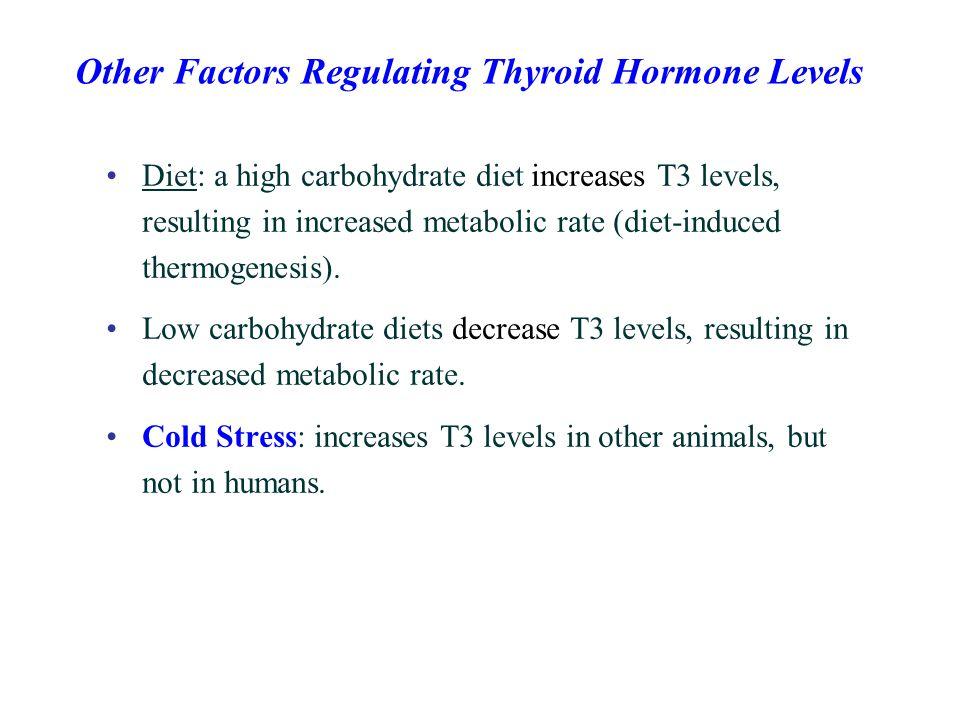 Other Factors Regulating Thyroid Hormone Levels