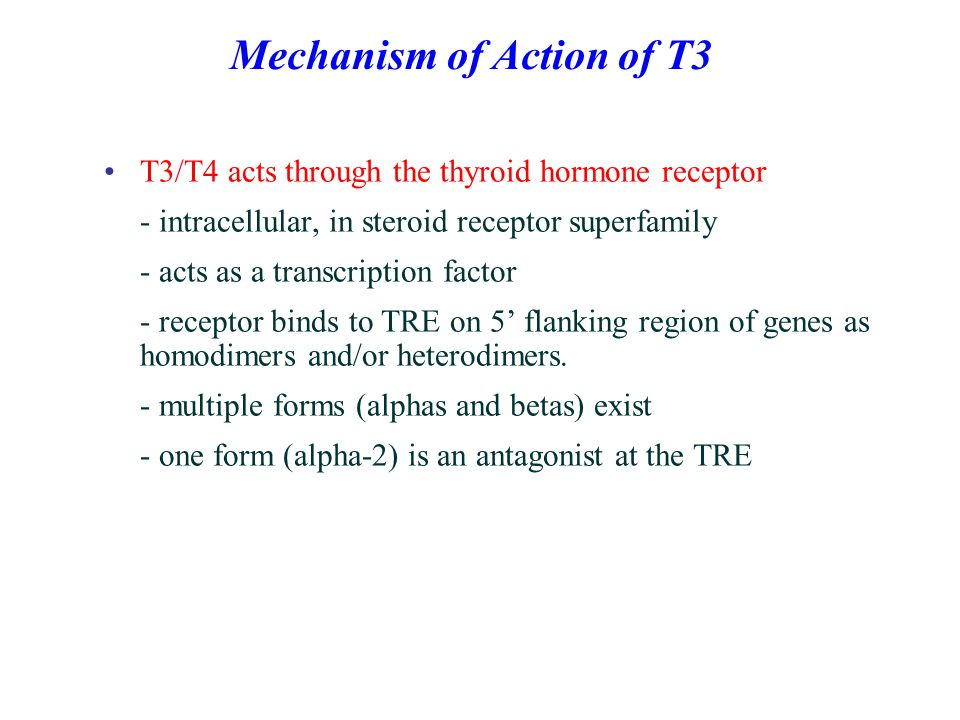 Mechanism of Action of T3