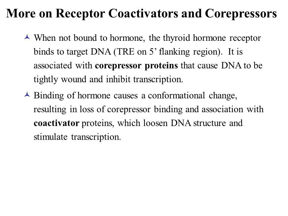 More on Receptor Coactivators and Corepressors