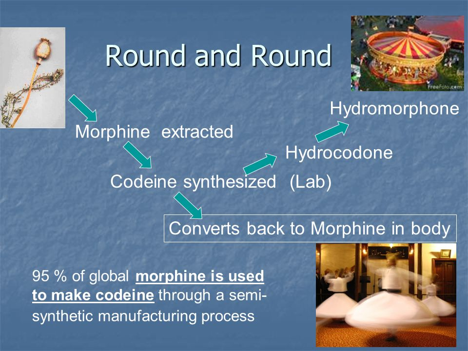 Round and Round Hydromorphone Morphine extracted Hydrocodone