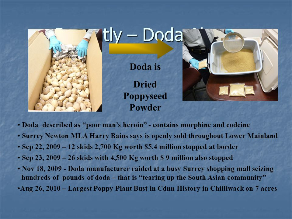 Dried Poppyseed Powder