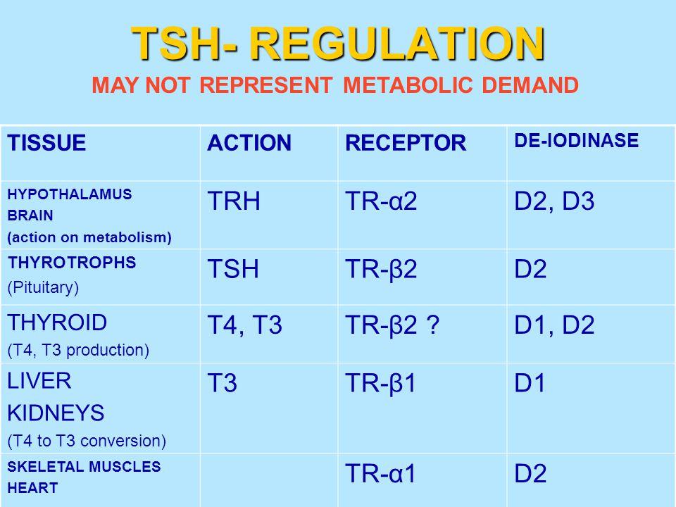 TSH- REGULATION TRH TR-α2 D2, D3 TSH TR-β2 D2 T4, T3 TR-β2 D1, D2 T3