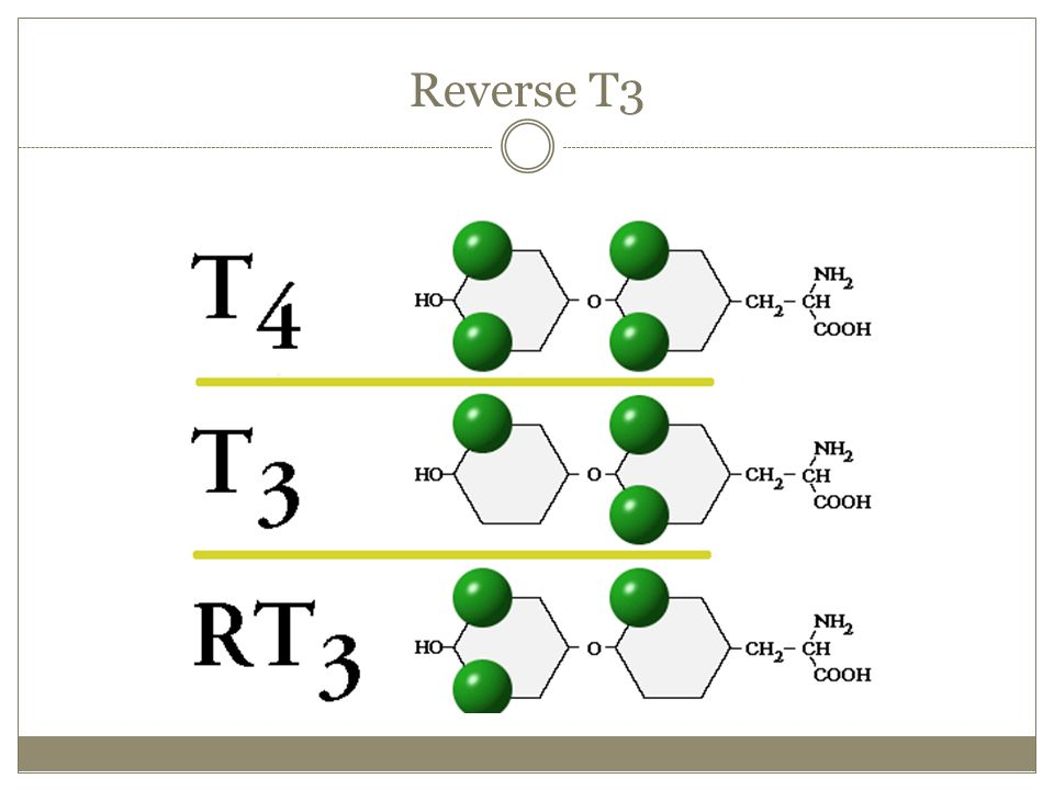 Reverse T3