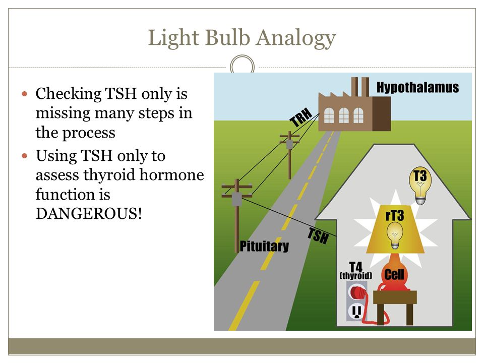 Light Bulb Analogy Checking TSH only is missing many steps in the process.