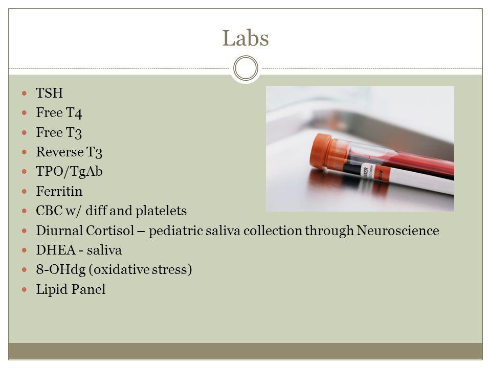 Labs TSH Free T4 Free T3 Reverse T3 TPO/TgAb Ferritin