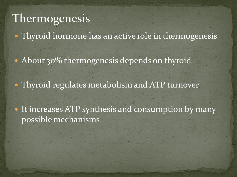 Thermogenesis Thyroid hormone has an active role in thermogenesis