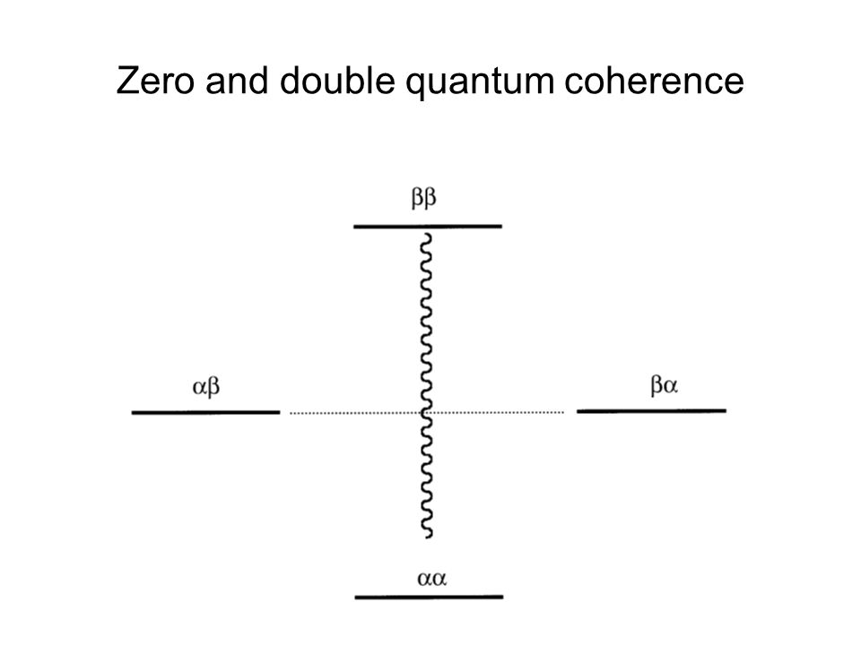 Zero and double quantum coherence