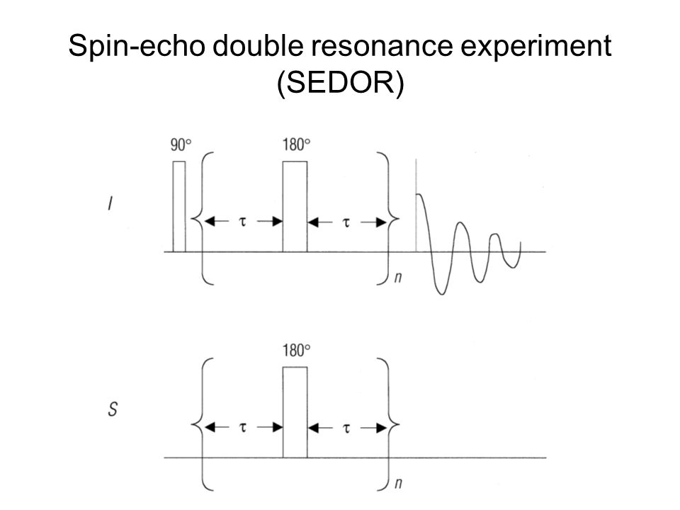Spin-echo double resonance experiment (SEDOR)