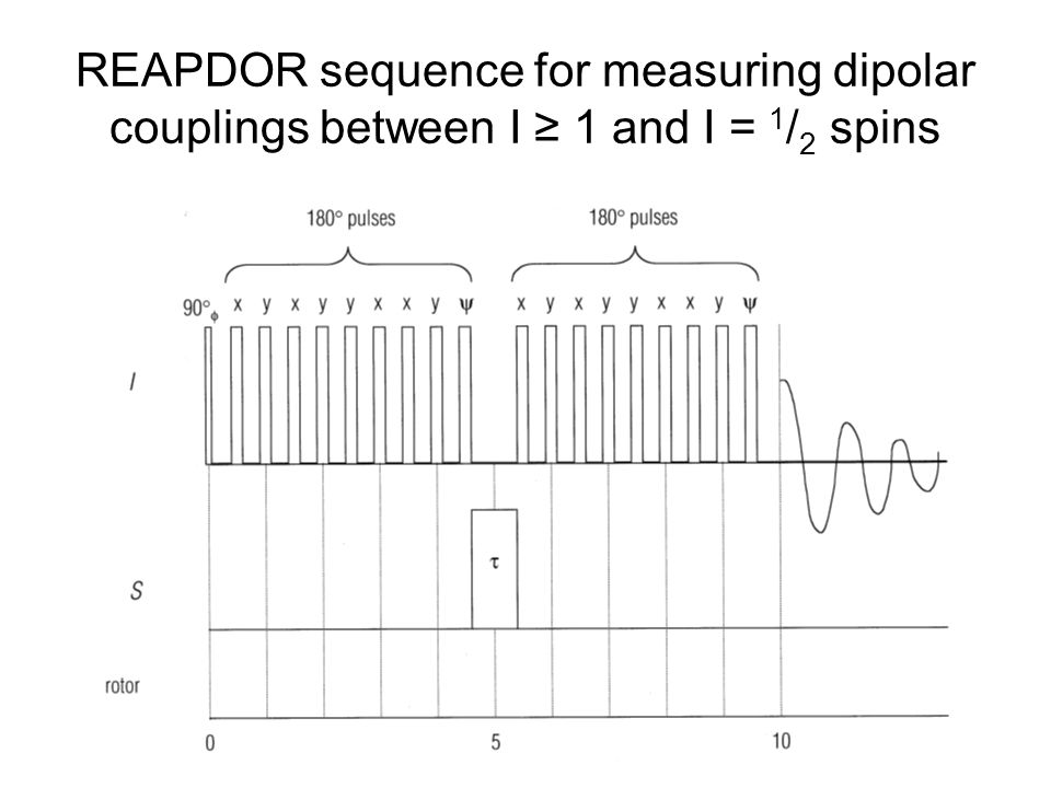 REAPDOR sequence for measuring dipolar couplings between I ≥ 1 and I = 1/2 spins