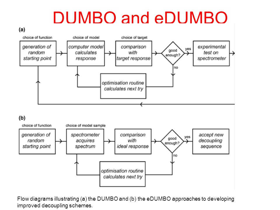 DUMBO and eDUMBO Flow diagrams illustrating (a) the DUMBO and (b) the eDUMBO approaches to developing improved decoupling schemes.