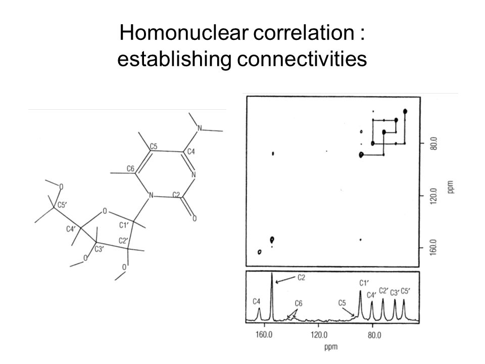 Homonuclear correlation : establishing connectivities