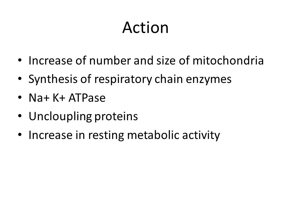 Action Increase of number and size of mitochondria