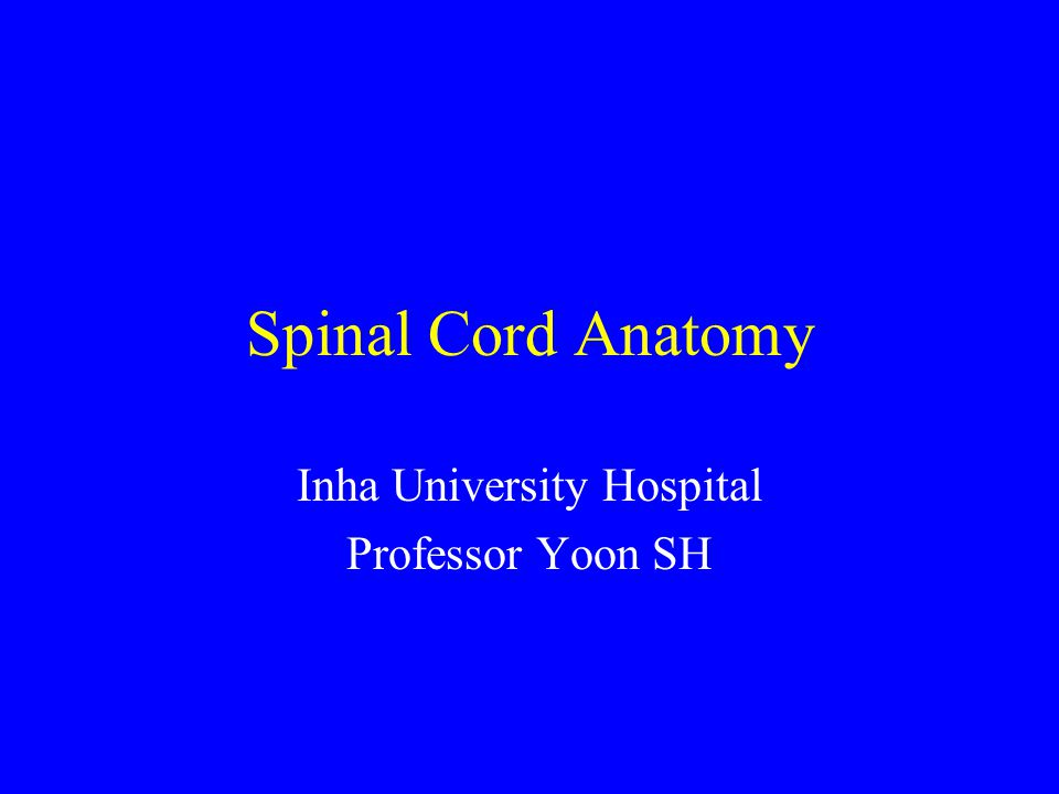 Inha University Hospital Professor Yoon SH