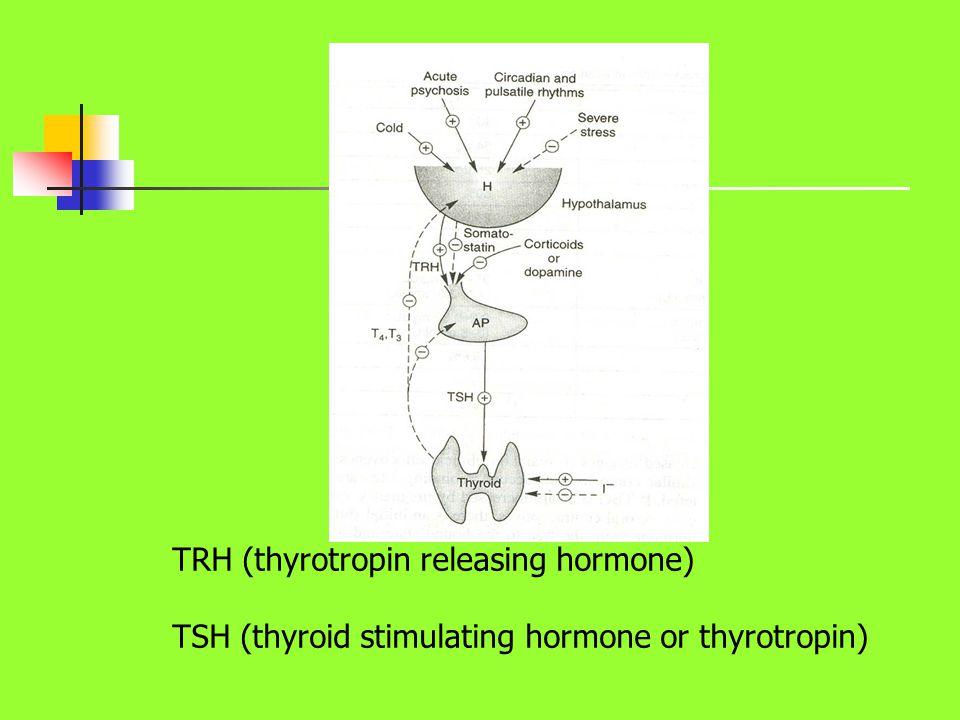 TRH (thyrotropin releasing hormone)
