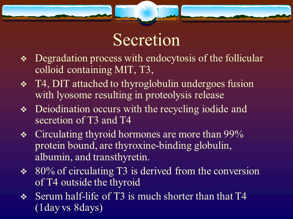Secretion Degradation process with endocytosis of the follicular colloid containing MIT, T3,
