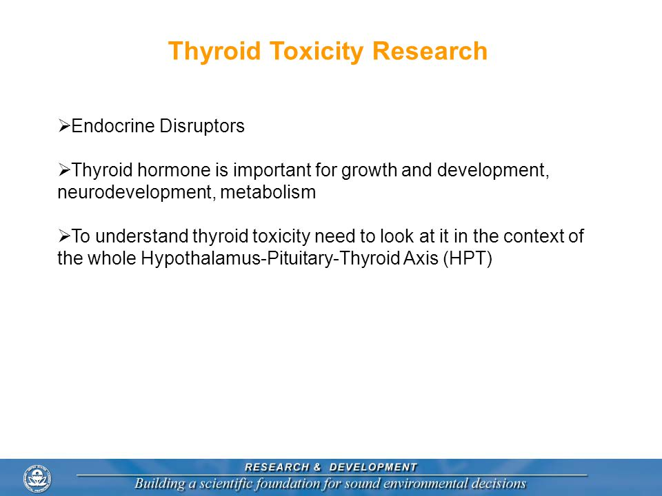 Thyroid Toxicity Research