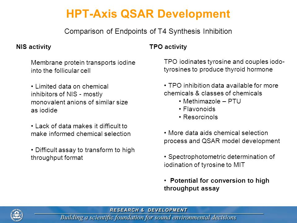 HPT-Axis QSAR Development