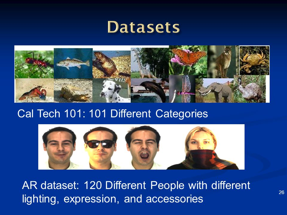 Cal Tech 101: 101 Different Categories