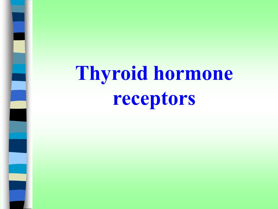 Thyroid hormone receptors