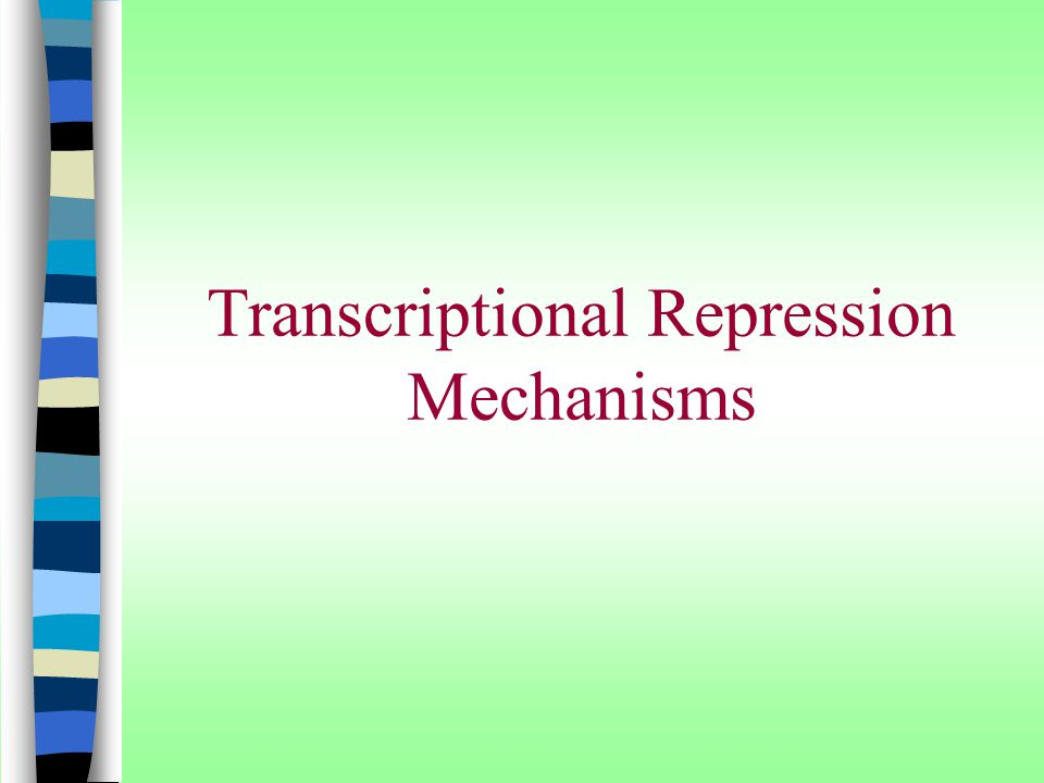 Transcriptional Repression Mechanisms