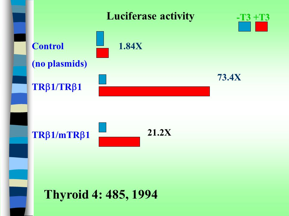 Thyroid 4: 485, 1994 Luciferase activity -T3 +T3 Control (no plasmids)