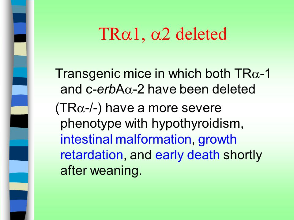 TRa1, a2 deleted Transgenic mice in which both TRa-1 and c-erbAa-2 have been deleted.