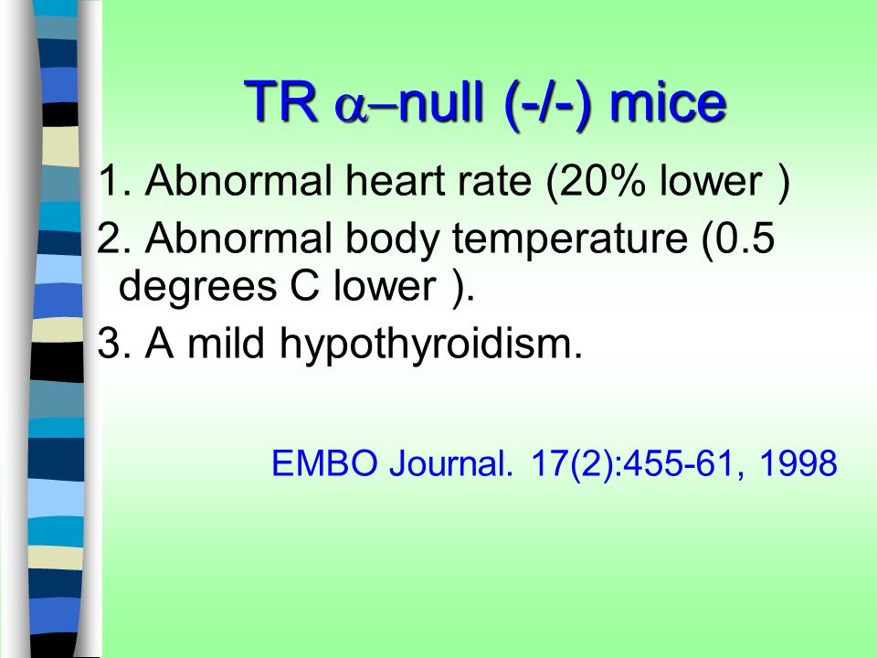TR a-null (-/-) mice 1. Abnormal heart rate (20% lower )