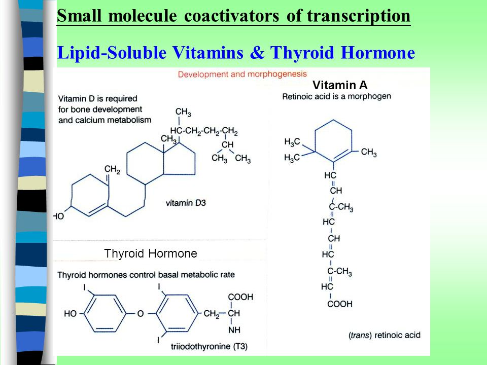 Small molecule coactivators of transcription