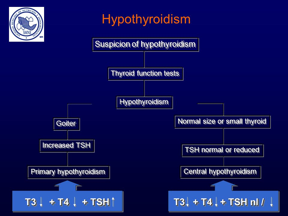 Hypothyroidism T3 + T4 + TSH T3 + T4 + TSH nl /