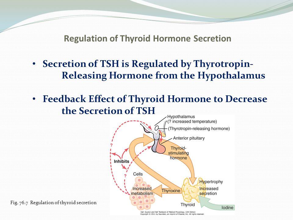 Regulation of Thyroid Hormone Secretion