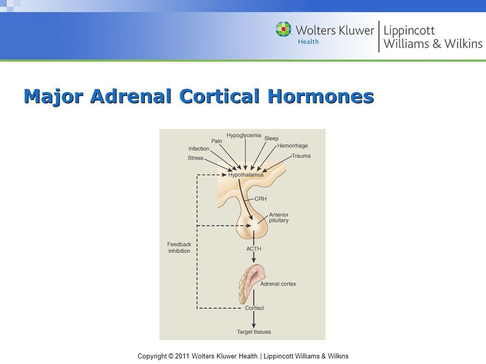 Major Adrenal Cortical Hormones