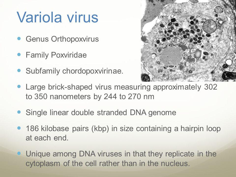 Variola virus Genus Orthopoxvirus Family Poxviridae
