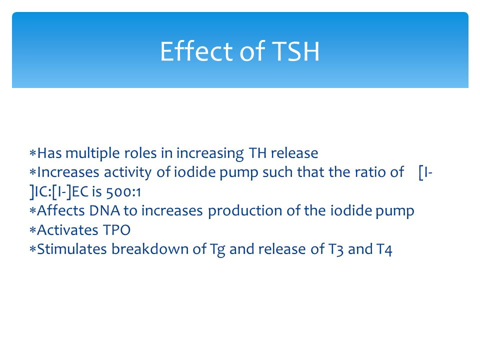Effect of TSH Has multiple roles in increasing TH release