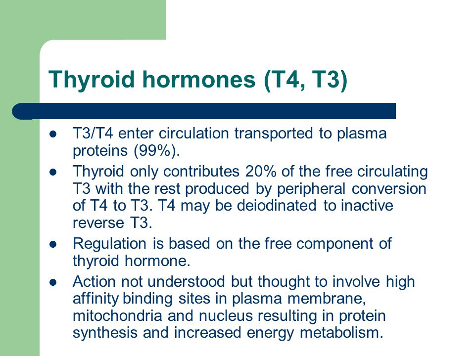 Thyroid hormones (T4, T3) T3/T4 enter circulation transported to plasma proteins (99%).