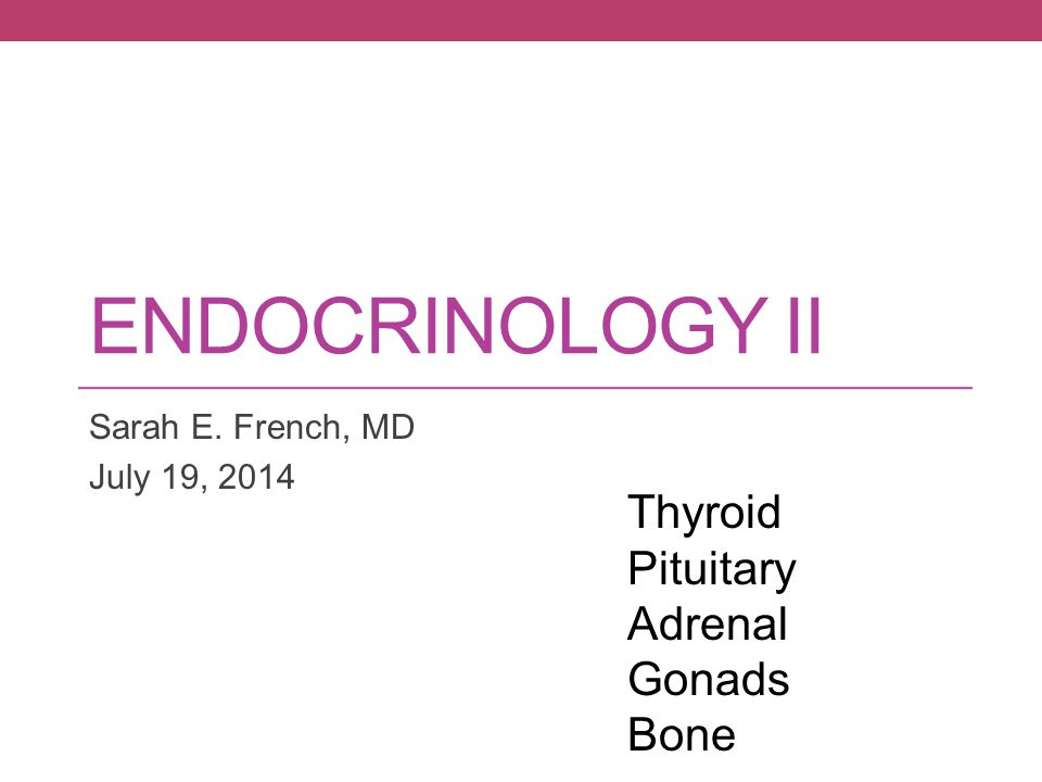 Endocrinology II Thyroid Pituitary Adrenal Gonads Bone