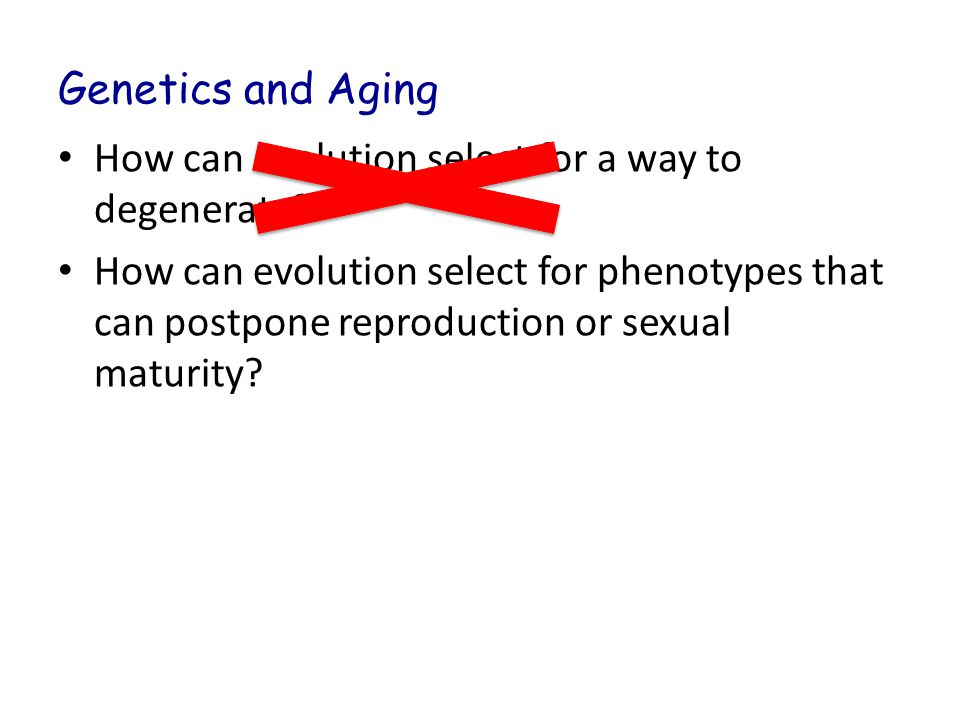 Genetics and Aging How can evolution select for a way to degenerate