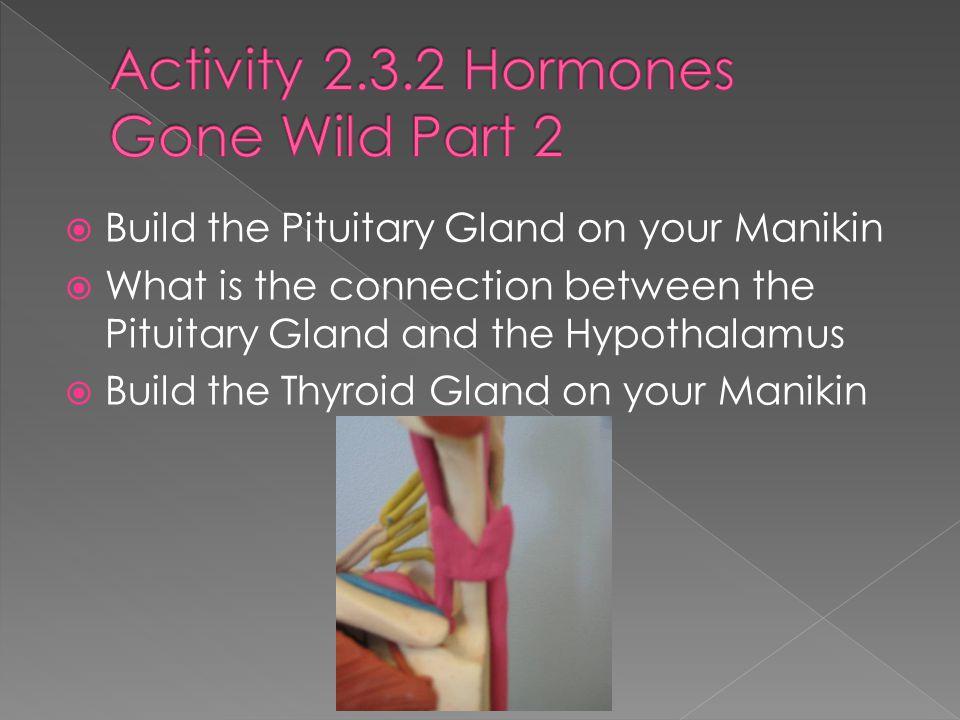 Activity 2.3.2 Hormones Gone Wild Part 2