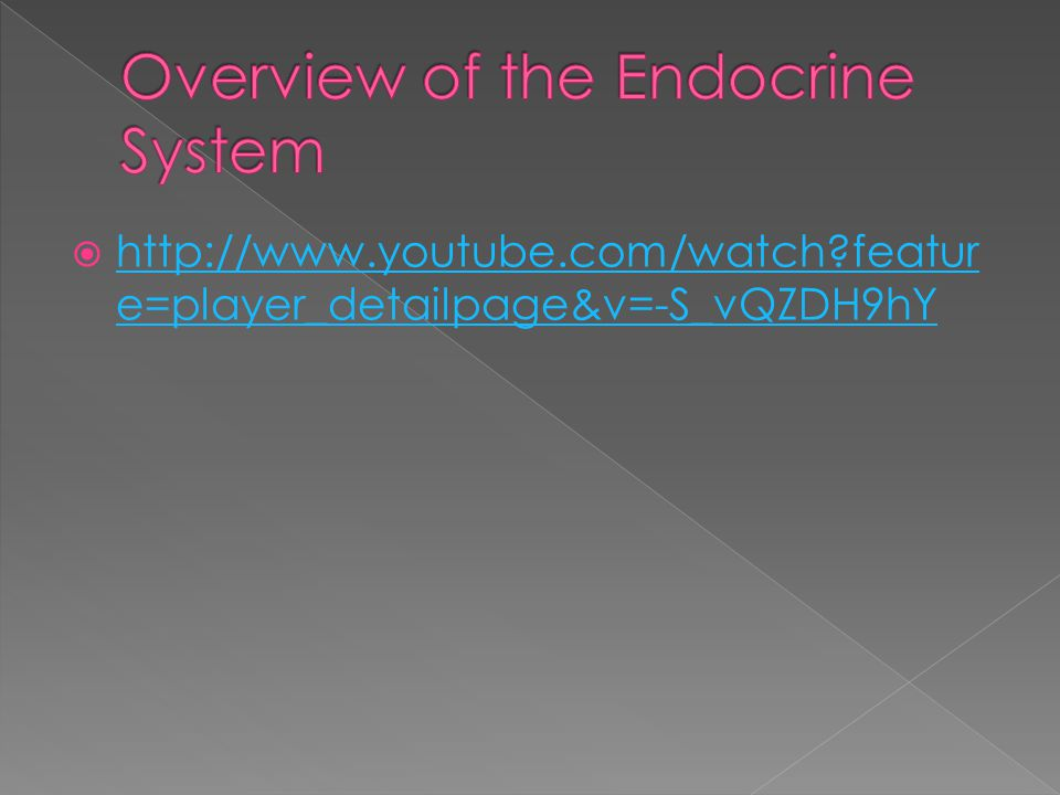 Overview of the Endocrine System