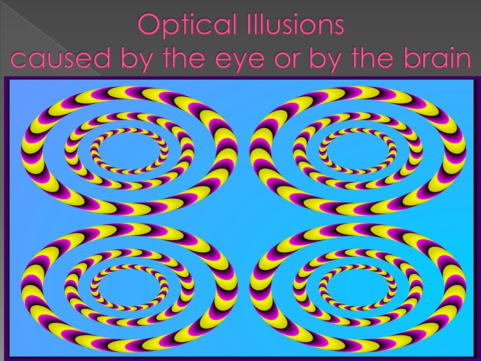Optical Illusions caused by the eye or by the brain