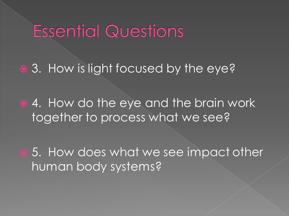 Essential Questions 3. How is light focused by the eye