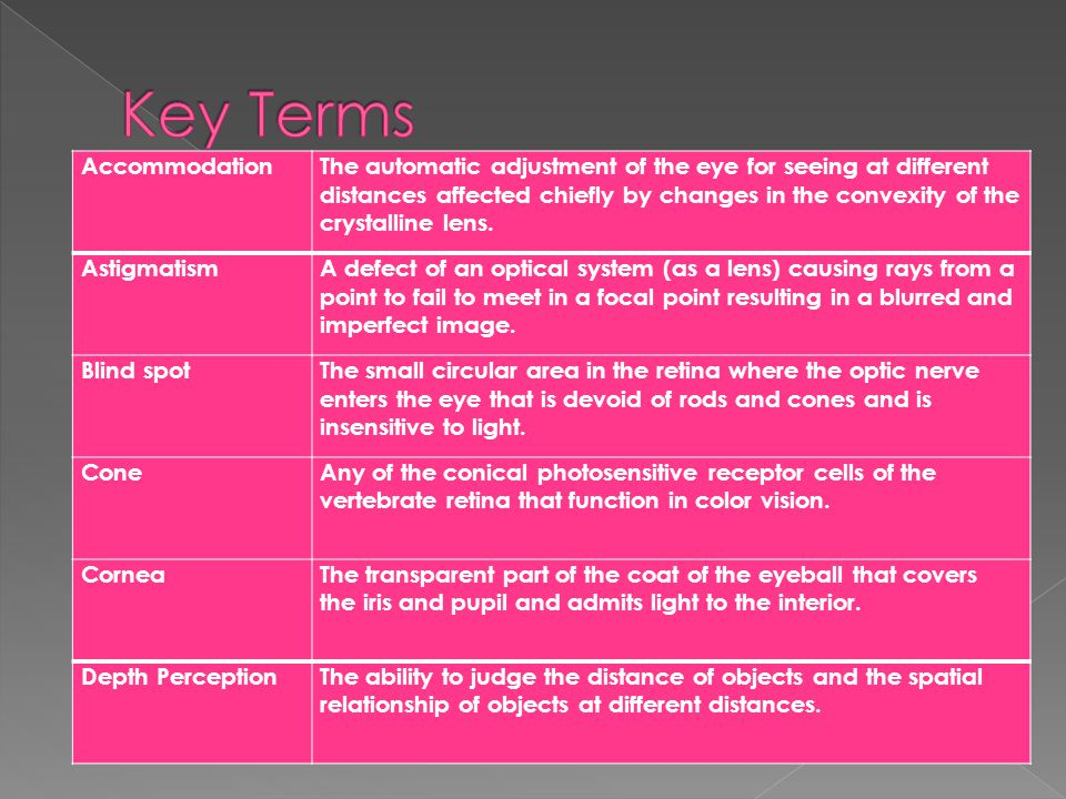 Key Terms Accommodation