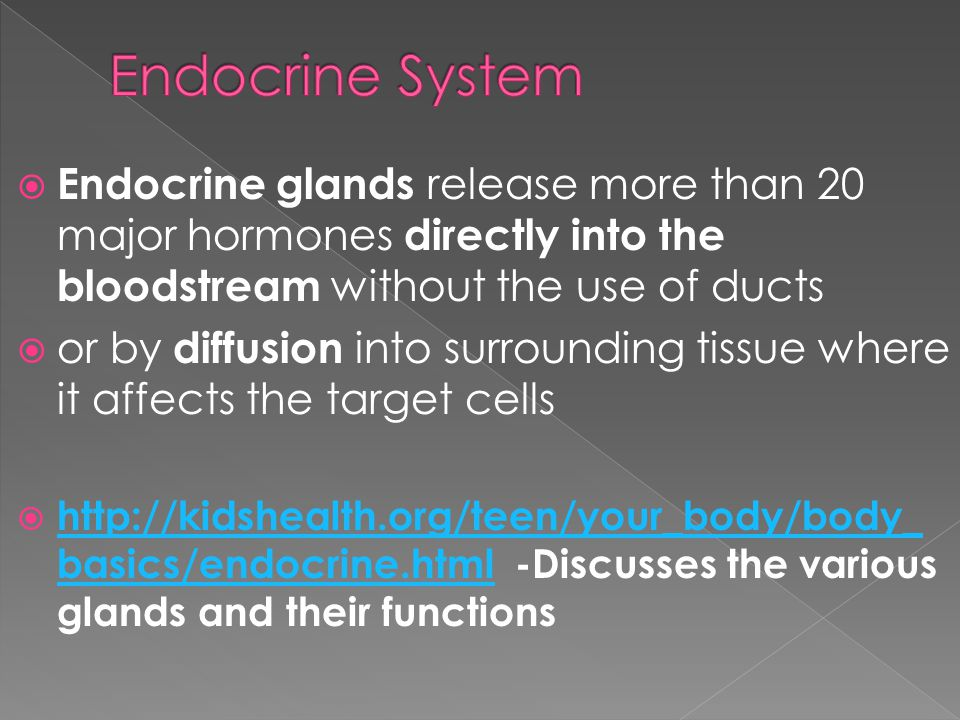 Endocrine System Endocrine glands release more than 20 major hormones directly into the bloodstream without the use of ducts.